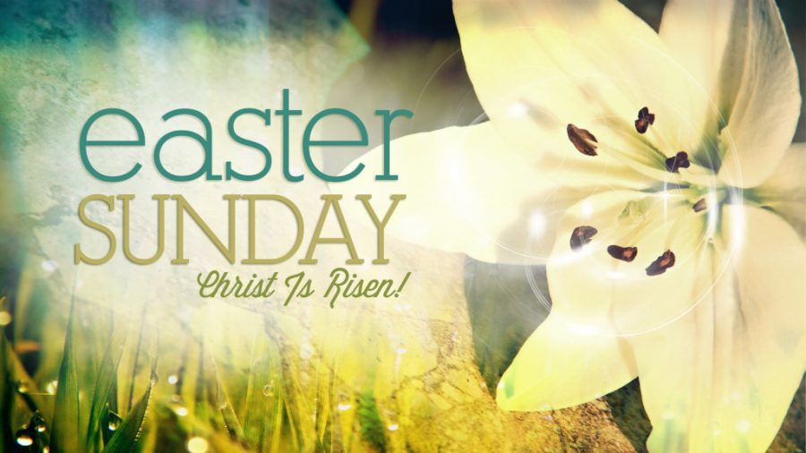 Alleluia Christ is Risen Image
